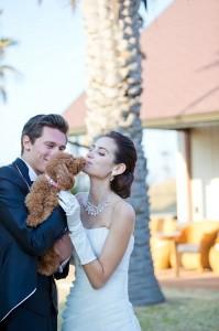 ペットの犬も一緒に結婚式
