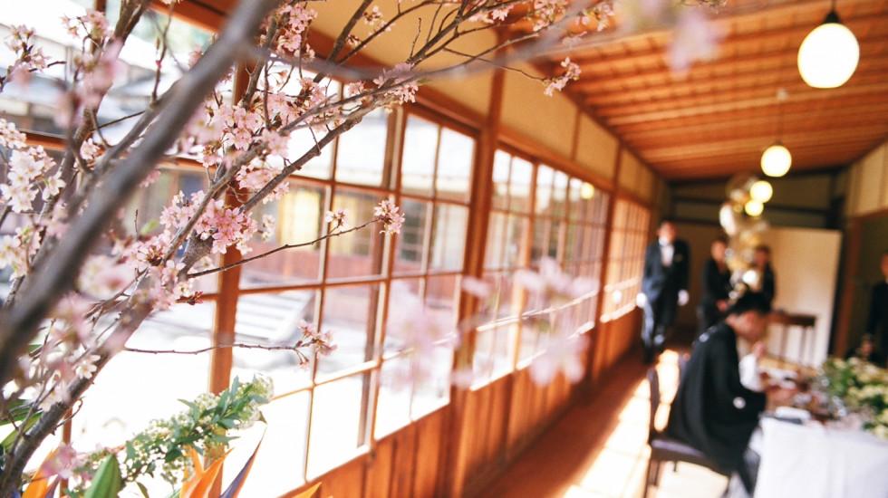桜の季節の三溪園で結婚式