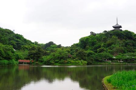 三渓園の趣ある庭園