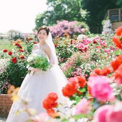320種、2500株のバラが咲き誇る、美しきバラ園での挙式