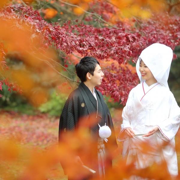 横浜で和風結婚式と言えば「三渓園」特別な一日を