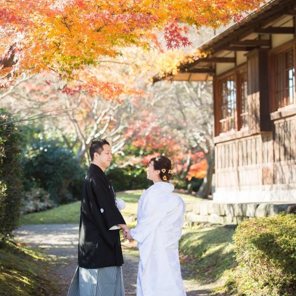 【最大48万円ご優待☆】2019年12月にご結婚式検討の方へ